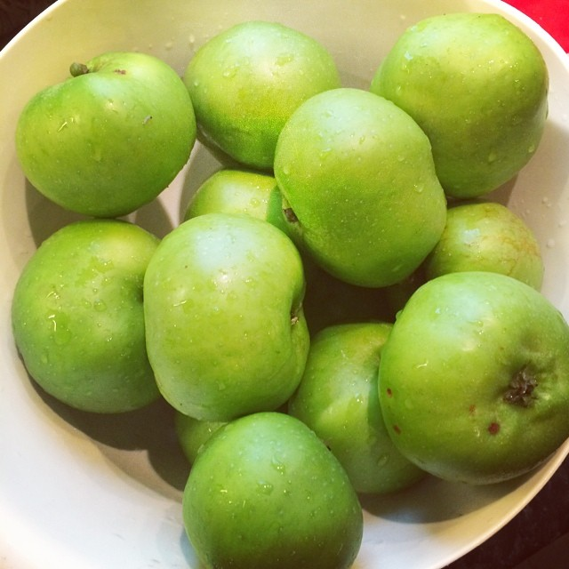 A fresh bowl of #cookingapples from my apple tree... I have a yummy apple pie cooking for pudding. Nom nom #constantgarden