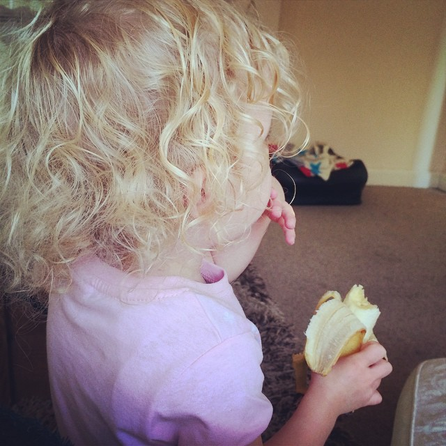 Little princess can get to the bananas now... She helps herself every morning! #banana #thief