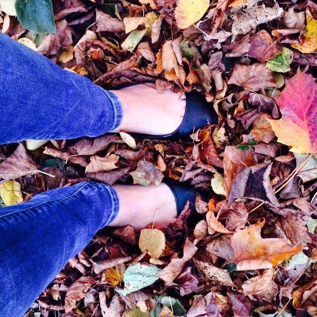 There's nothing like a fresh autumn walk after a busy day in the office... #autumn #colourmeautumn