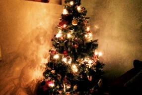 (349/365) Wednesday 17th December 2014 – oh Christmas tree