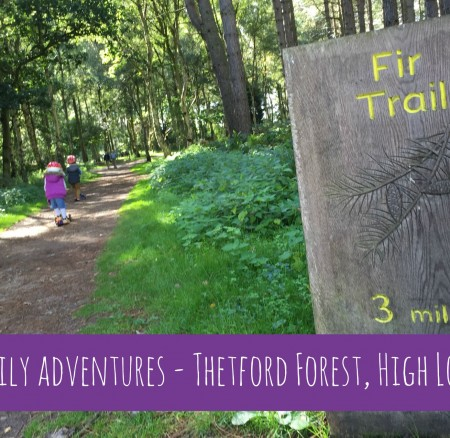 Family adventures at High Lodge, Thetford Forest